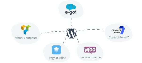 [Update] Plugin E-goi + Wordpress: ¡Segmentar se hizo aún más Fácil!