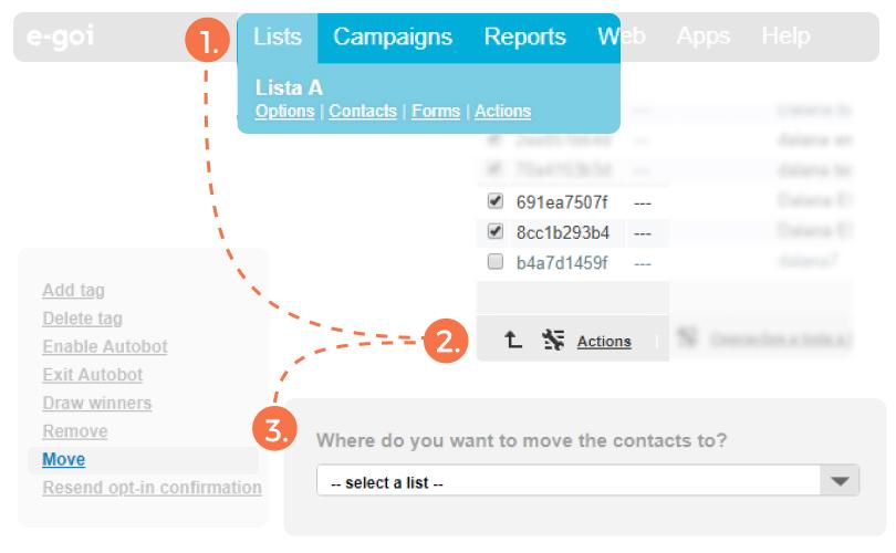 Email Marketing Segmentation - Merge All Contacts into a Single List | E-goi